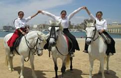 Horse riding - La Mata